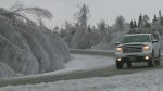 CTV Atlantic: 51 recommendations after ice storm