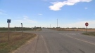 A man was seen putting down an injured dog with a handgun near the intersection of Range Road 211 and Hwy 512.