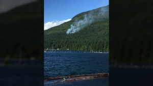 The cause of a 0.3-hectare blaze burning at Great Central Lake near Port Alberni is still under investigation. Aug. 18, 2017. (Facebook)