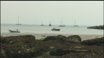 Get Off The Big Island- Hornby Island