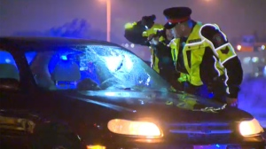 CPS members inspect the shattered windshield of a sedan following Friday night's collision in Deerfoot Meadows involving a cyclist