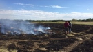 Damaged ground from a grass fire is shown on Aug. 19, 2017 (Mark Villani / CTV Saskatoon)