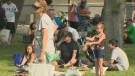 Picnic in the Park to celebrate cultural diversity