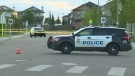Edmonton police are investigating a collision in north Edmonton after a young man was hit by a vehicle on Saturday, August 19, 2017.