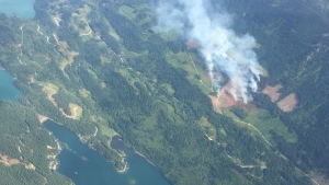 This fire sparked near Harrison Lake on Aug. 19. The BC Wildfire Service is asking boaters to give firefighters a wide berth so they can work efficiently. (BC Wildfire Service)