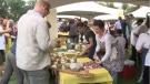 Local chefs share talent in 'Great Saskatchewan Mustard Festival.'