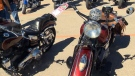 Show and shine's highlight over 1,000 motorcycles