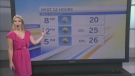 CTV Morning Live Weather Aug 22