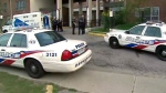 North York, fatal stabbing