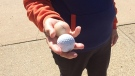 A Ft. Saskatchewan resident holds two golf balls found in an area cul-de-sac.