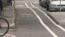 The city said the bike lane curbs will allow them to eventually install protected bike lanes, while still being able to adjust the design of the lane if necessary. (File image)