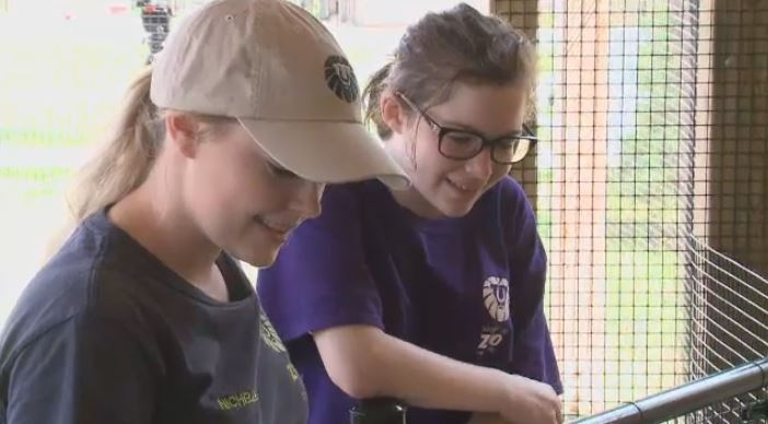 The Magnetic Hill Zoo is providing teenagers with the opportunity to get a first-hand look at what it takes to become a zookeeper.