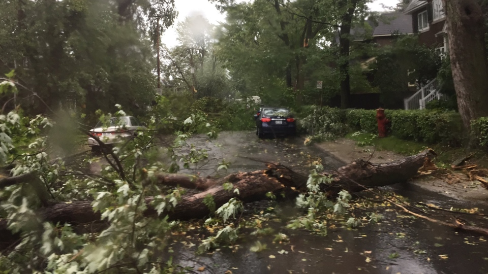 Image result for montreal microburst storm