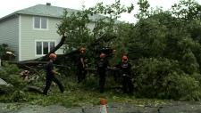 CTV National News: Sudden summer storm