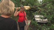NDG resident Linda Benoit talks to CTV reporter Genevieve Beauchemin after her car was crushed by a falling tree on Aug. 22, 2017