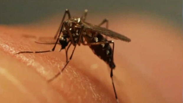 Human Case of West Nile Virus in Grey Bruce