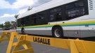 Transit Windsor buses on display for a launch celebration of the new service in the town of LaSalle. (Angelo Aversa/CTV Windsor)