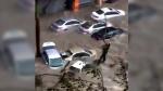 Guangdong cars