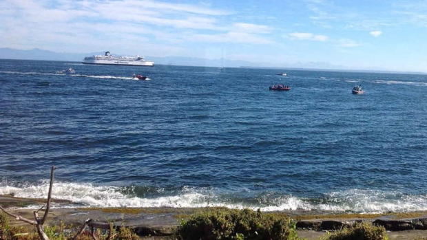 BC Ferries vessel rescues six off Mayne Island