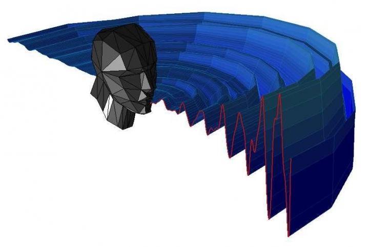 Illustration of acoustic pattern of mouth clicks for human echolocation. (Thaler et al./PLOS)