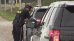 An OPP officer speaks to a driver on the side of the road in this undated file photo.