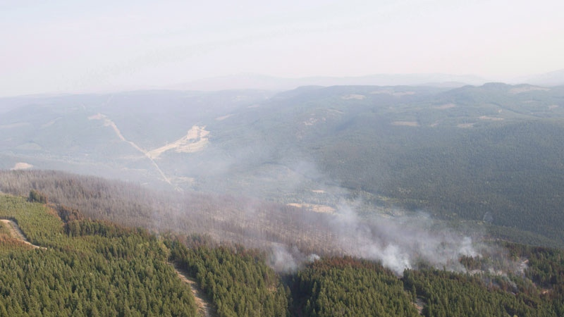 The Philpot Road wildfire is seen along a hillside just outside of Kelowna, B.C., on August 28, 2017. THE CANADIAN PRESS/Jonathan Hayward