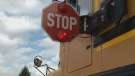 A file image of a school bus is seen.