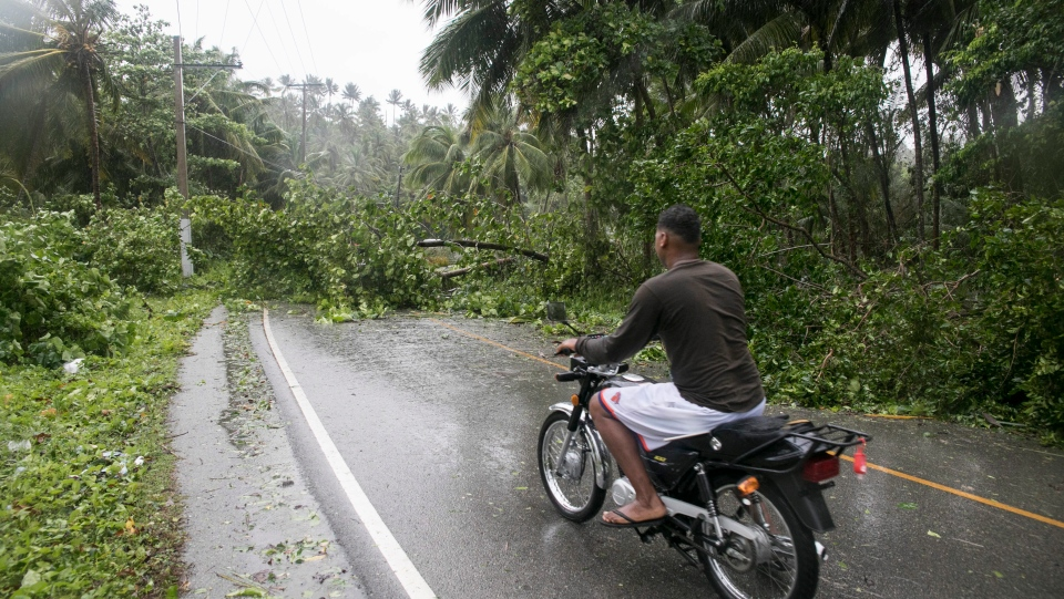 A motorcyclist is blocked by trees felled by Hurricane Irma in Samana, Dominican Republic, Thursday, Sept. 7, 2017. (AP Photo/Tatiana Fernandez)