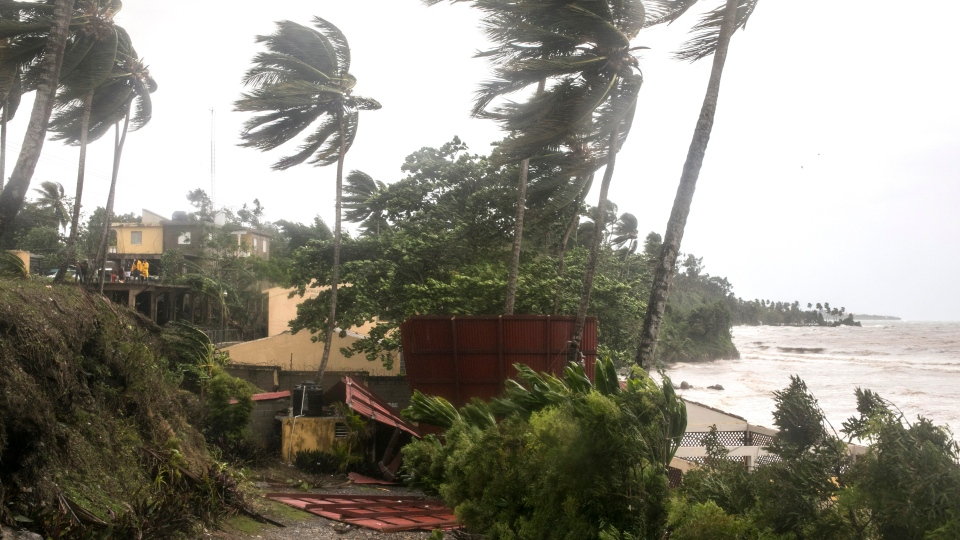 Winds brought by Hurricane Irma blow palm trees in Samana, Dominican Republic, Thursday, Sept. 7, 2017. (AP Photo/Tatiana Fernandez)