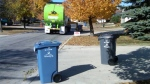 The City of Winnipeg can help you  figure out what's accepted in the blue bin and what belongs in the trash. (File image)