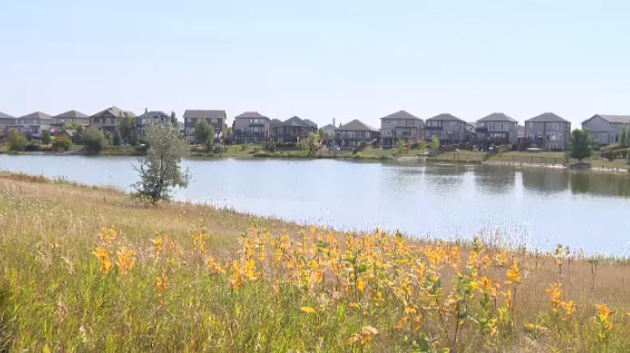 This image shows the retention pond near Samuel Burland School in Winnipeg.