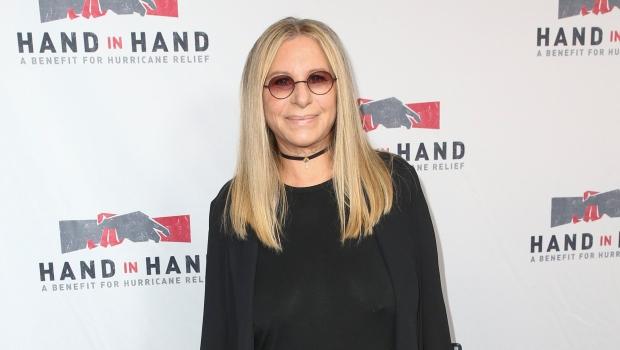 Barbra Streisand attends the Hand in Hand benefit