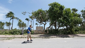A man skateboards as he takes a picture of a fallen tree at Lummus Park in the Hurricane Irma aftermath on Monday, Sept. 11, 2017 in Miami. (David Santiago/Miami Herald via AP)