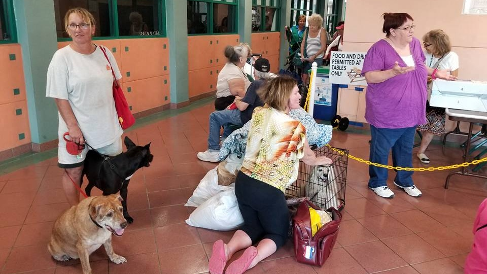 Residents wait with their pets at animal shelter in Palm Beach County, Fla. on Sept. 9. (Friends of Palm Beach County Animal Care and Control/Facebook)