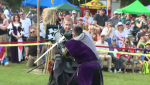medieval faire waterloo