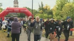 Annual Terry Fox walk held in Assiniboine Park