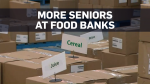 Seniors turning to food banks in Toronto: report