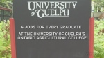 Tough job market? Not for U of G's ag grads