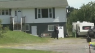 Regina woman killed in N.L. murder-suicide