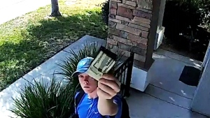 Wallet found