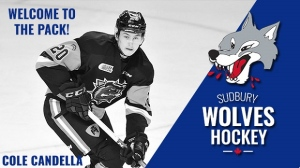 Cole Candella will make his Wolves debut on Friday. (Photo supplied/SudburyWolves)