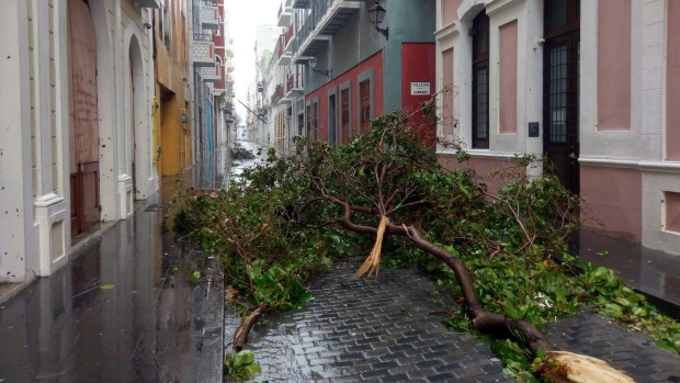 In this photo provided by Jason Heskew, a downed tree blocks a street during Hurricane Maria in Old San Juan, Puerto Rico, Wednesday, Sept. 20, 2017. (Jason Heskew via AP)