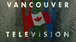 VTV promo