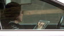 A woman uses an iPad while behind the wheel of a vehicle stopped in traffic at a red light in downtown Vancouver, B.C., on Monday October 20, 2014. Some 33 per cent of Canadians who participated in a recent poll conducted by the Canadian Automobile Association admit they have texted while stopped at a red light in the last month. THE CANADIAN PRESS/Darryl Dyck