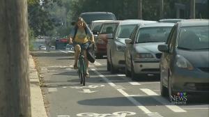 woodbine bike lanes, bike lanes,