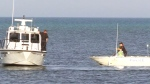 Plane crashes into Lake Huron; 1 person dead