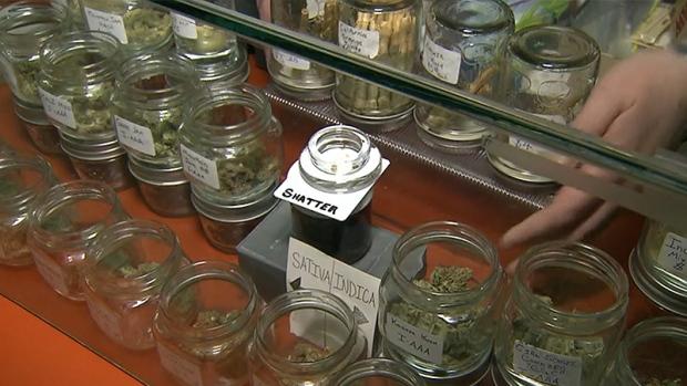 weed-varieties