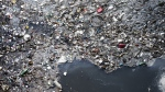 A petition has been launched to recognize a landmass of plastic trash in the Pacific Ocean as a country in an environmental awareness campaign. (Marcelo Horn/IStock.com)