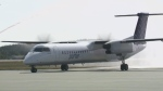 Porter Airlines has become the second major carrier to arrive at the Saint John Airport.