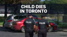 Child dies after being left in car, one in custody